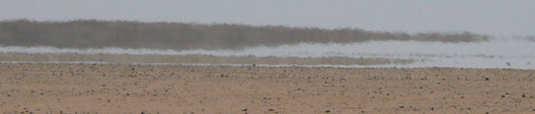 Le désert de Libye... mirage.